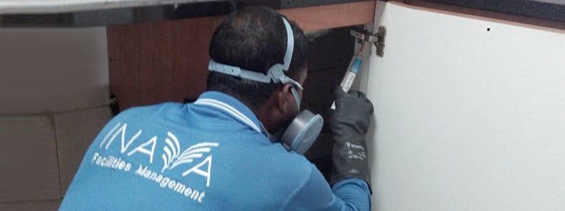 Pest Control Management Company Dubai